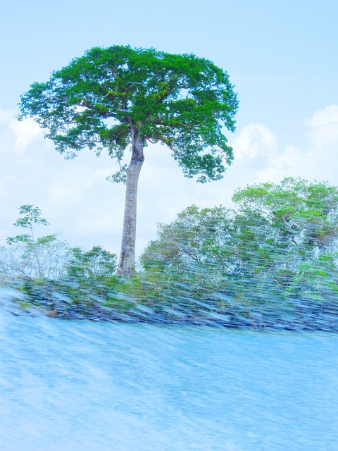 6 Nicaragua