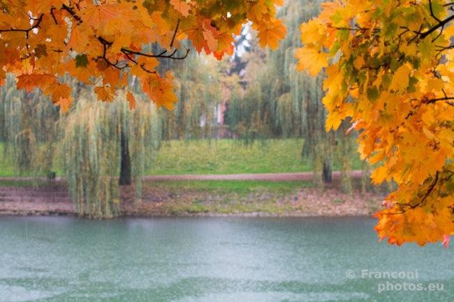 Colori d'autunno a Ljubljana.